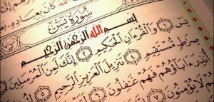 فضل قراءة سورة يس يوميا