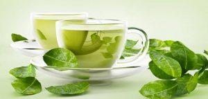 تجربتي مع شرب الشاي الاخضر على الريق